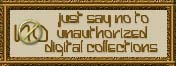 Just say no to unauthorized digital collections